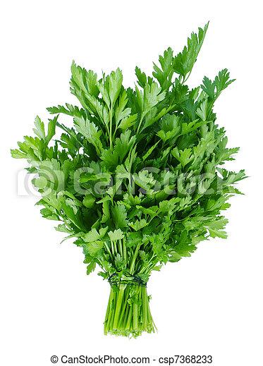 Fresh parsley - csp7368233