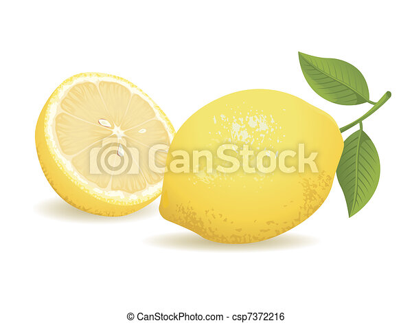 Lemon Fruit - csp7372216
