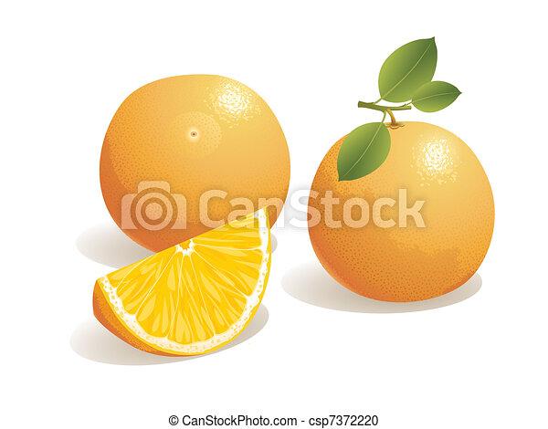 Orange Fruit - csp7372220