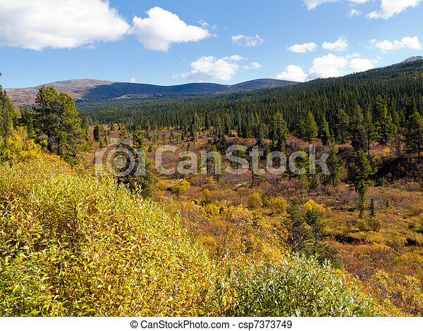 Fall in northern wilderness, Yukon T, Canada - csp7373749