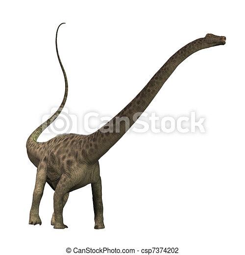 Diplodocus  - csp7374202