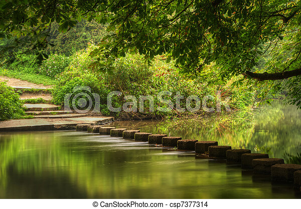 Enchanted forest scene of slow flowing stream with vibrant reflections - csp7377314