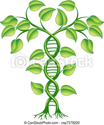 DNA plant concept - csp7379220