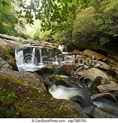 Dense Forest Waterfall - csp7380705