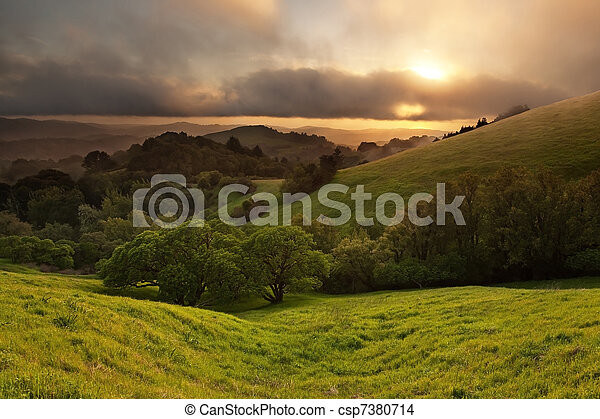 Foggy California Meadow Sunset - csp7380714