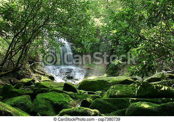 cascada, bosque, Lluvia - csp7380739