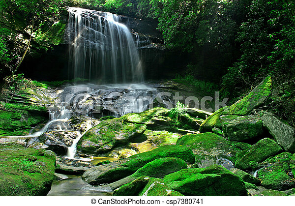 Rain Forest Waterfall - csp7380741