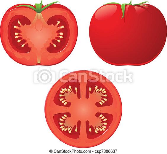Tomate Ilustraciones y Clipart 17 313 Tomate Ilustraciones ...