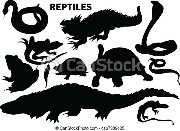 reptiles - csp7389405