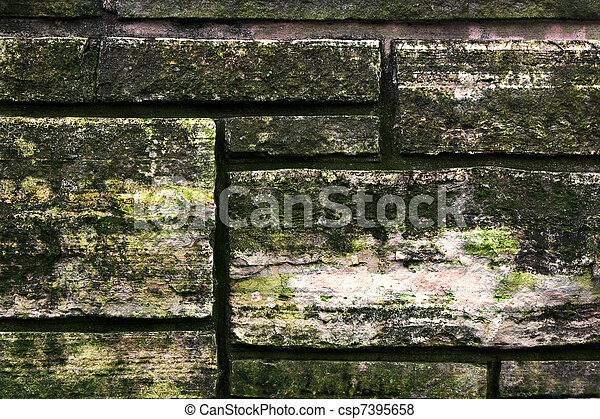 images de moisissure croissant pierre mur pierre mur csp7395658 recherchez des. Black Bedroom Furniture Sets. Home Design Ideas