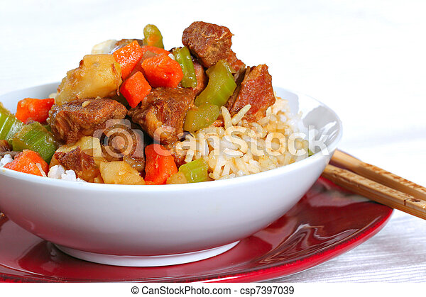 Stewed pork over rice - csp7397039