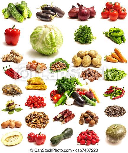 蔬菜 - csp7407220