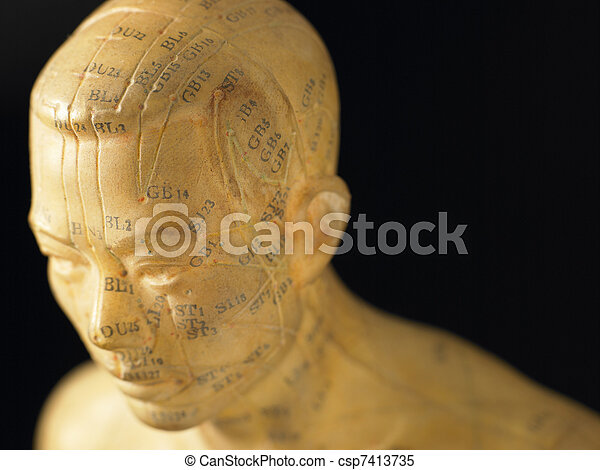 Meridian Lines On An Acupuncture Figurine - csp7413735