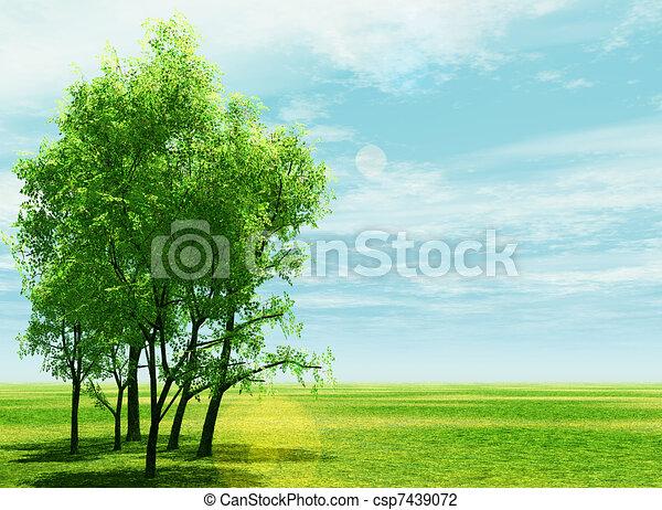 Spring scenery - csp7439072