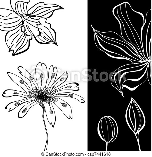 Contrast floral background - csp7441618