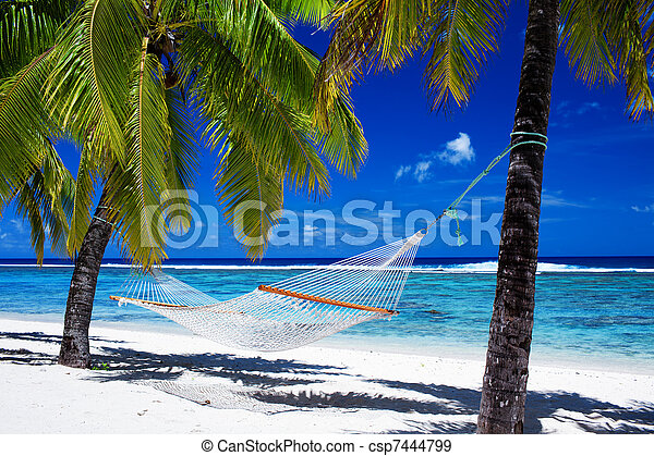Hammock between palm trees on tropical beach - csp7444799