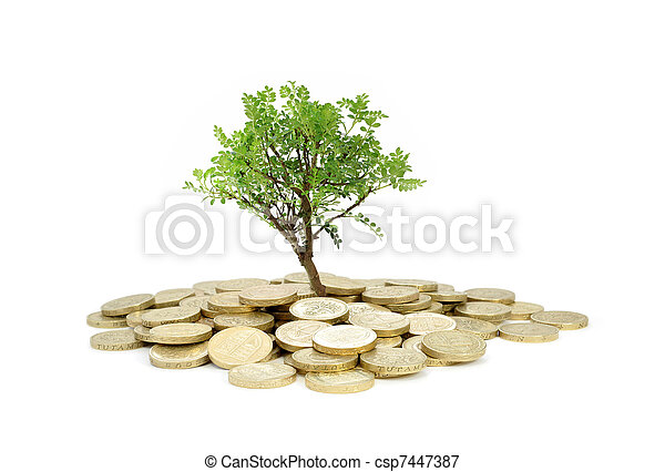 Tree growing from money - csp7447387