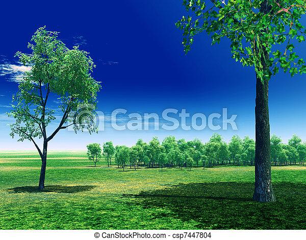 Spring scenery - csp7447804