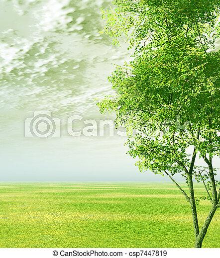 Spring scenery - csp7447819
