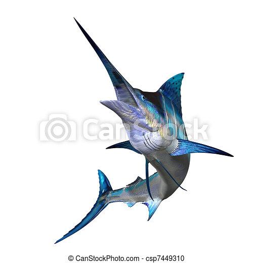 Marlin  - csp7449310