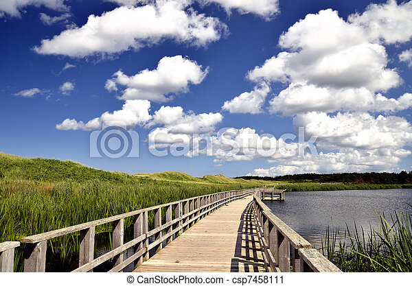 Seaside marsh boardwalk - csp7458111