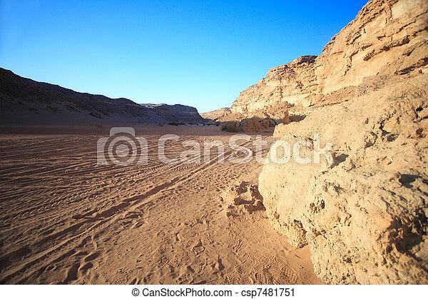 The utterly barren western desert - csp7481751