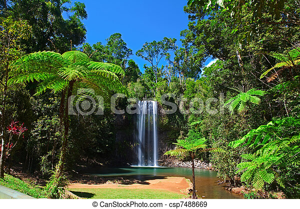 tree fern and waterfall in tropical rain forest paradise - csp7488669