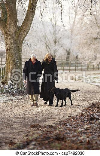 photographies de hiver couple chien promenade par glacial personne csp7492030. Black Bedroom Furniture Sets. Home Design Ideas