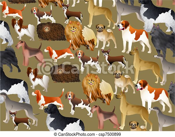 Pedigree Dog Wallpaper - csp7500899