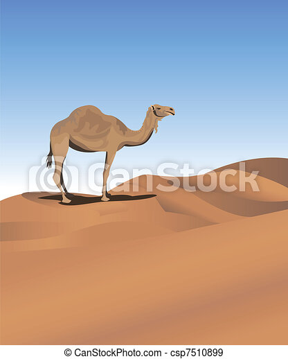 Background illustration with a camel in the desert