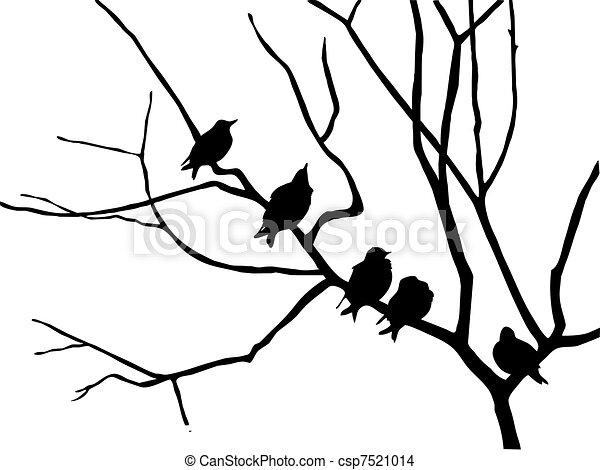 Dessin de silhouette tourneau branche arbre - Branche arbre dessin ...