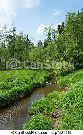Environmentally-friendly summer landscape, Russia - csp7527419