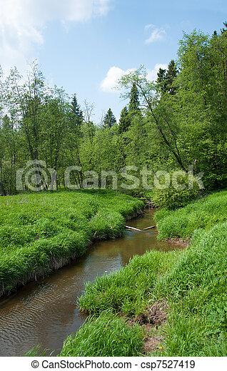 Environmentally-friendly summer landscape, Russia - csp7527419