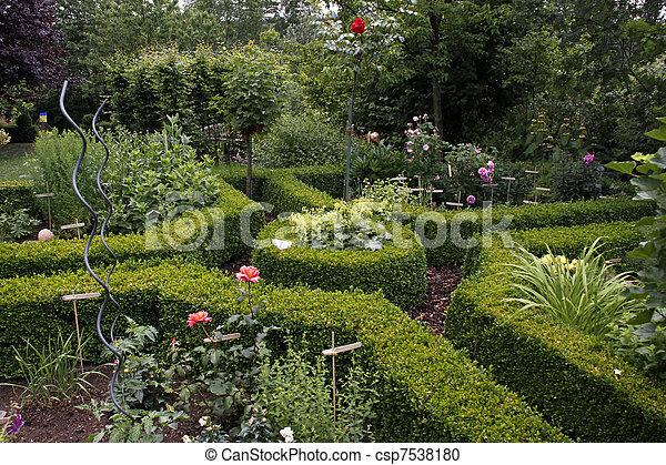 petite maison, jardin, buis, haies - csp7538180