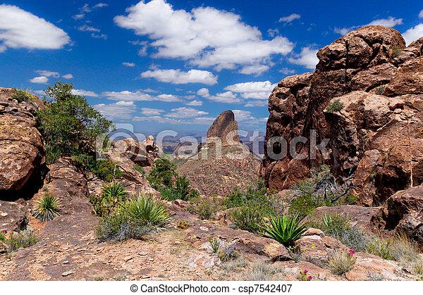 AZ- Superstition Mtn. Wilderness - csp7542407