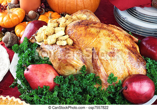 Holiday Turkey Dinner 3585 - csp7557822