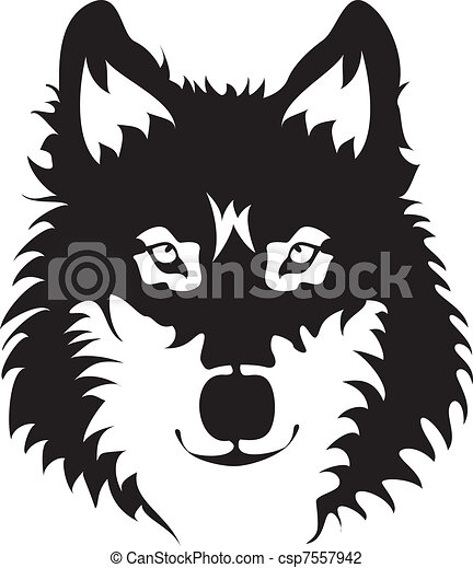 Wolf Face - csp7557942