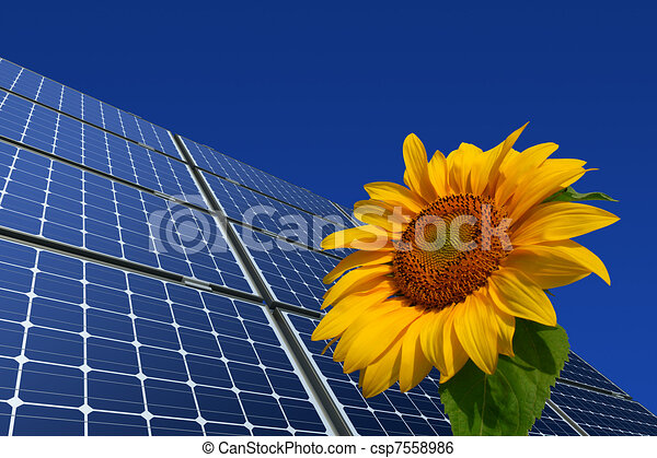 Solar panels and sunflower - csp7558986