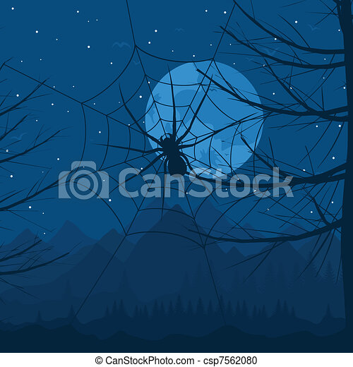 Spider at night - csp7562080