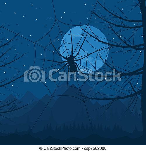 Spider at night - csp7562080