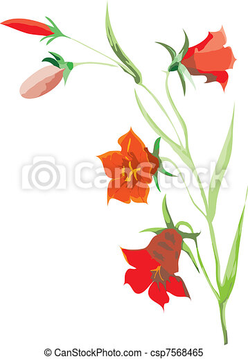 red flowers - csp7568465