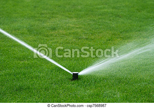Lawn sprinkler spraying water - csp7568987