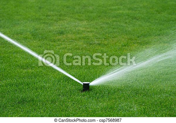 Lawn sprinkler spraying water - csp7568987