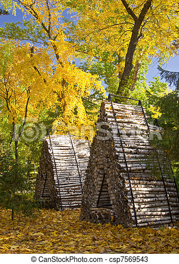 Autumn forest. Landscape with Birch knitted chopped firewood. Not sawn birch logs. For the kindling fire - csp7569543