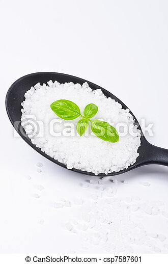 Kalahari salt roughly with basil - csp7587601