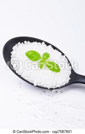 Kalahari salt roughly with basil - csp7587601