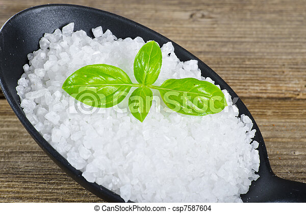 Kalahari salt roughly with basil - csp7587604
