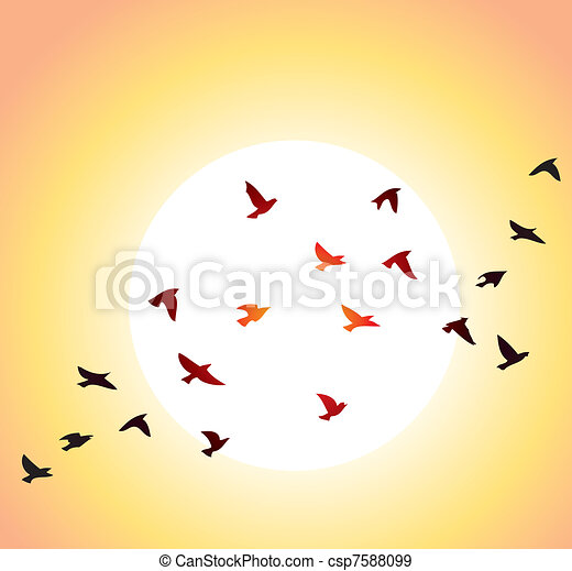 flying birds and bright sun - csp7588099