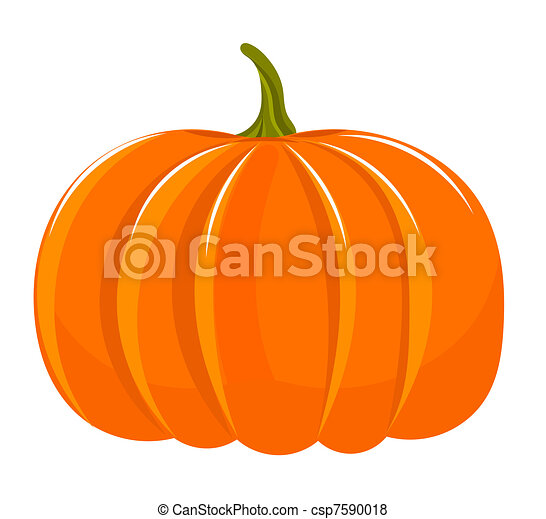 Pumpkin illustration - csp7590018