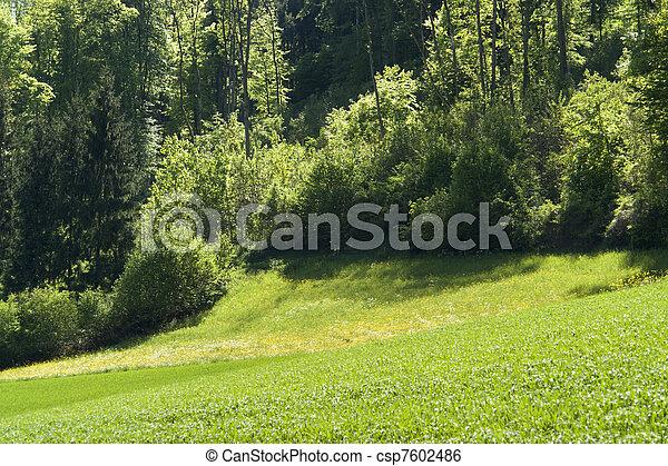 idyllic spring scenery in Hohenlohe - csp7602486
